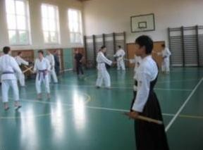 lrg-393-semin_iaido_a_tankendo_.bud_jovice_akai_trejn.jpg